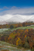Eastern Howgill Fells near Sedbergh covered in early winter snow, seen from Garsdale, where the trees are still in autumn foilage. Cumbria, UK.