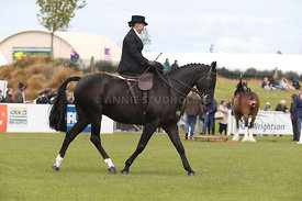 Canty_A_P_131114_Side_Saddle_1240