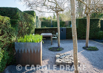 Gravelled courtyard area with four weeping ash, Fraxinus excelsior 'Pendula', steel and lead container, an arrangement of stone setts and a seating area surrounded by yew hedging. Tony Ridler's Garden, Cockett, Swansea, UK