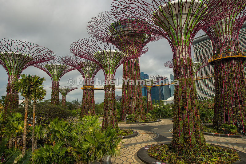 Singapore Gardens by the Bay photos