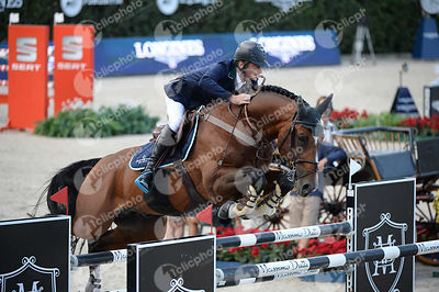 Denis LYNCH  ,(IRL), ALL STAR 5 during Longines Cup of the City of Barcelona competition at CSIO5* Barcelona at Real Club de Polo, Barcelona - Spain