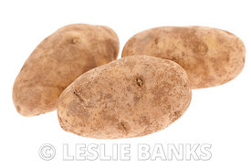 Three whole raw russett potatoes