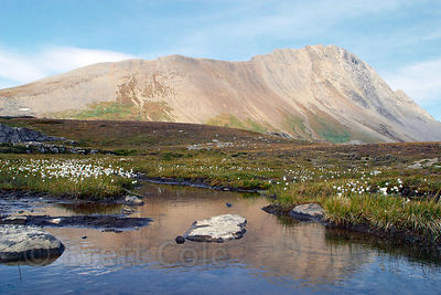 Pastel light on lakelets on Wilcox Pass, Banff NP, Canadian Rockies.