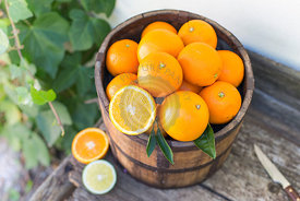 bucket of oranges on an old wooden bench against ivy covered white wall