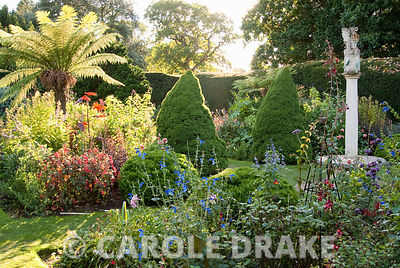 The Sundial Garden with late afternoon sun illuminating tree ferns, conical piceas and exotic herbaceous plants including salvias, dahlias and ricinus. Exbury Gardens, Exbury, Hants, UK