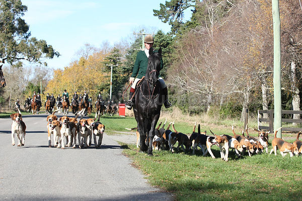 South Canterbury Hunt Club - Coldstream photos