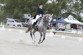 SI_Festival_of_Dressage_310115_Level_6_7_MFS_0836