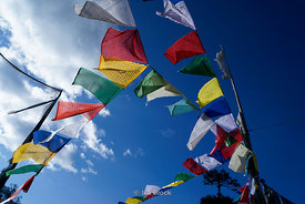 Prayer flags in Pele La, Bhutan.
