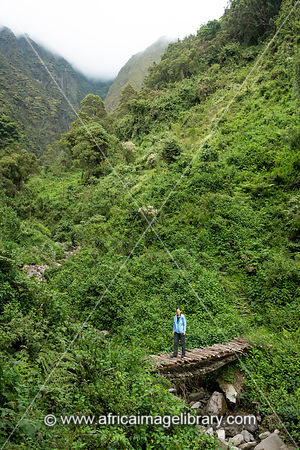 Tourist hiking in Sabyinyo gorge on Sabyinyo volcano in the Virunga Mountains, Mgahinga Gorilla National Park, Uganda