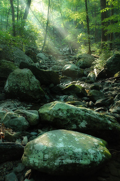 008-Blue_Ridge_D105087_Light_Rays_on_Dry_Creek_Preview