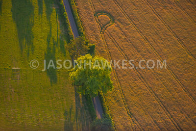 Aerial view of London, Upper Gatton Park, Reigate.