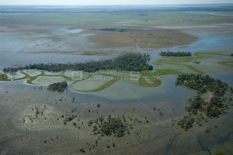 Aerial view of the Beni floodplains during the 2008 great flood of the Mamoré River, Beni Department, Eastern Bolivia.