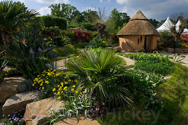 Paul Martin's Worldwide 1000 DAYS Garden.