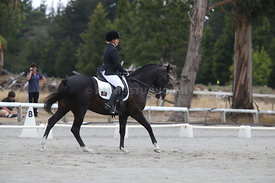 SI_Festival_of_Dressage_310115_Level_5_Champ_0810