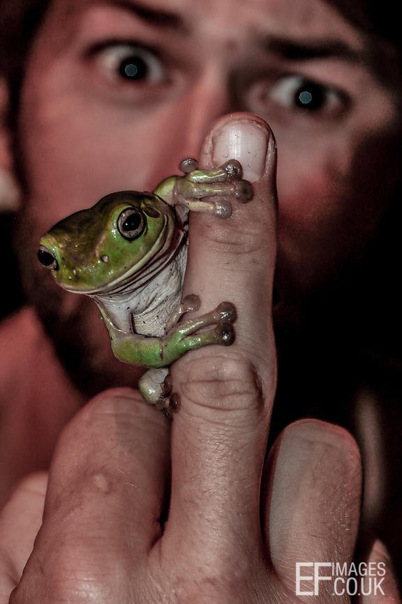 Man Giving The Finger With A Tree frog