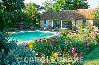 Country garden in May with swimming pool and pool house framed by border planted with aquilegias, hardy geraniums, hebes and lupins
