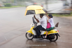 rainy day scene, heavy rain in thailand, asia.