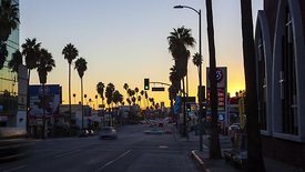 Medium Shot: Traffic, A Palm Tree Lined Street, & A California Sunset