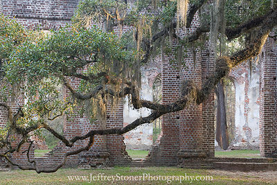Lowcountry Photographs