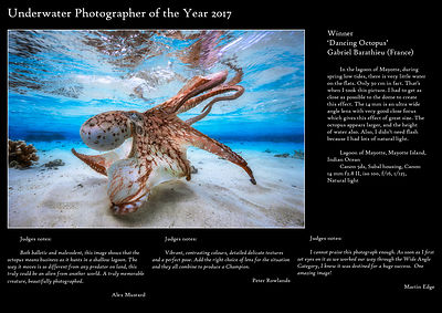 Underwater Photographer of the Year 2017 : Gabriel BARATHIEU UPY 2017
