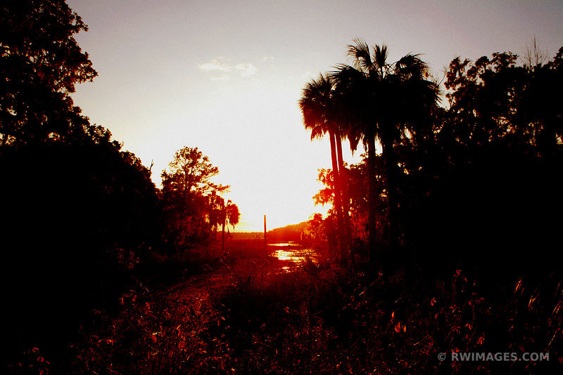 SUNSET VIEW FROM MAIN ROAD ON WEST SIDE OF CUMBERLAND ISLAND GEORGIA