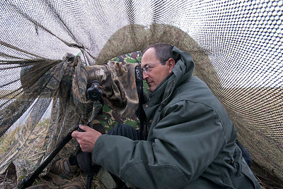 Jérôme Guillaumot Wildlife Photographer