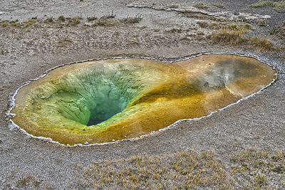 Belgian Pool - Yellowstone