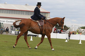 Canty_A_P_131114_Side_Saddle_1248