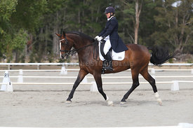 SI_Festival_of_Dressage_300115_Level_9_SICF_0447