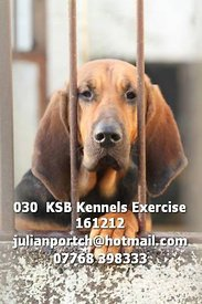 030__KSB_Kennels_Exercise_161212