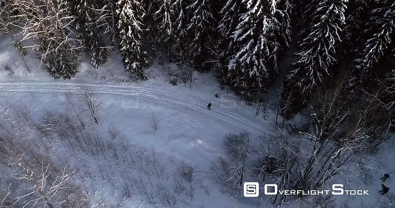 Man Walking a Snowy Forest, 4k Aerial Tilt View Towards a Young Male, Hiking Between Frozen Trees, Revealing Sipoonkorpi National Park, Freezing Cold Winter Day, Uusimaa, Finland
