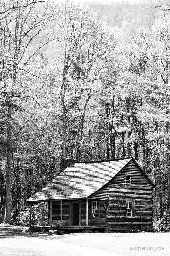 OLD CABIN CADES COVE SMOKY MOUNTAINS BLACK AND WHITE