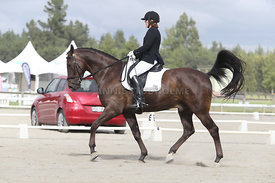 SI_Festival_of_Dressage_310115_Level_4_Champ_0580
