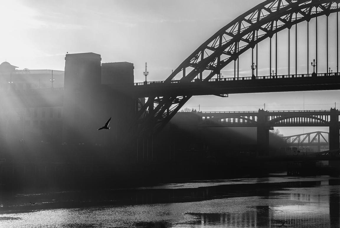 Tyne light