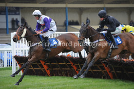 The newtonabbotracing.com Selling Handicap Hurdle Race