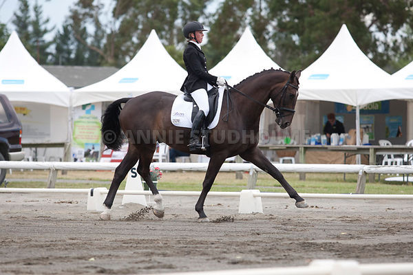 South Island Dressage Champs 2014 photos