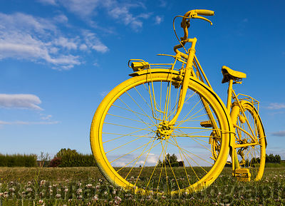 Old Yellow Bicycle in a Field