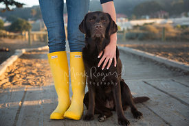 Chocolate lab with owner in yellow boots