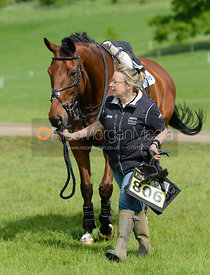 COOL MOUNTAIN - Rockingham Castle International Horse Trials 2016
