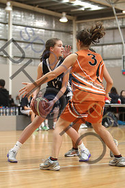nt v vic photos