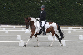 Canty_Dressage_Champs_071214_004