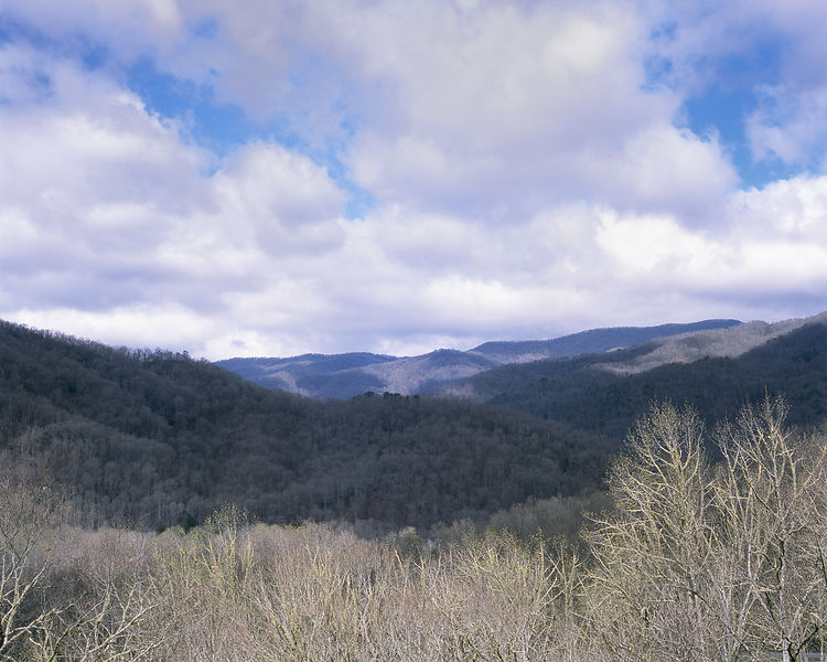047-Blue_Ridge_D145220_Blue_Ridge_In_Early_Spring_045_Preview