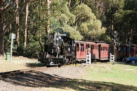 steam engine 8A from Puffing Billy railways
