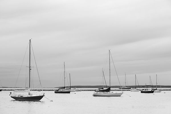 SAILBOATS SAG HARBOR LONG ISLAND NY EVENING BLACK AND WHITE