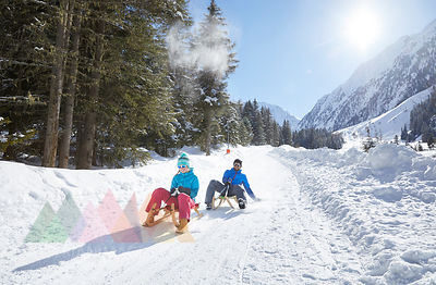 Couple sledding in snow-covered landscape