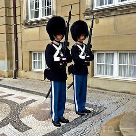 Royal Life Guards