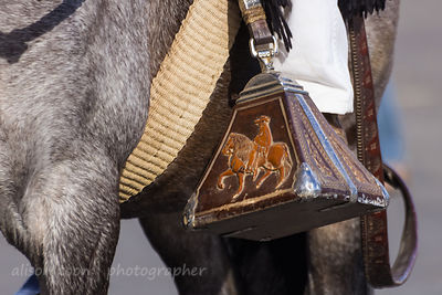 Peruvian Paso: traditional stirrup