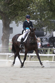 SI_Festival_of_Dressage_310115_Level_6_7_MFS_0631