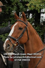 100_KSB_Marsh_Green_Meet_281012