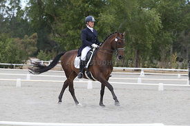SI_Festival_of_Dressage_310115_Level_8_MFS_1101